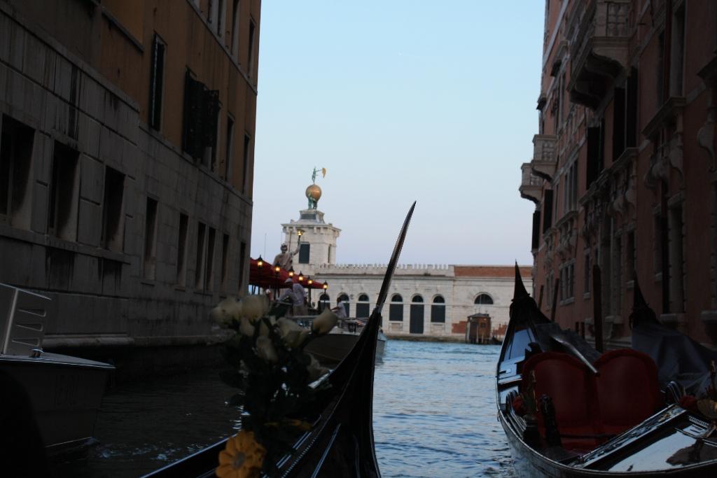 Scarlett London Venice (231)